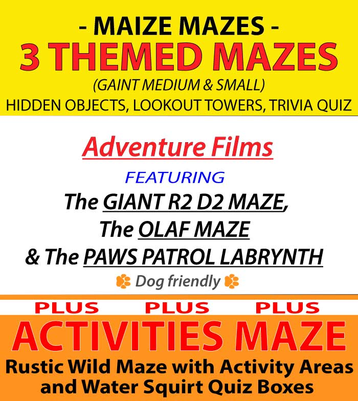 An image showing a leaflet for the 2020 Elton Giant Mazes