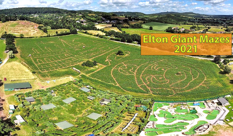 An image showing the Elton Maize Mazes in 2021