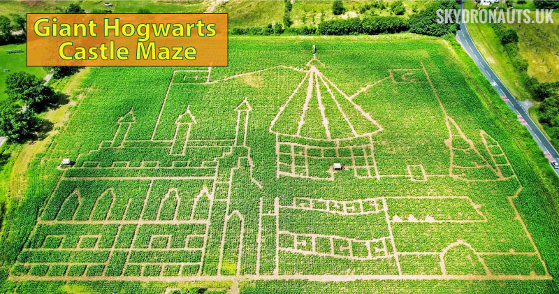 An image of the 2021 giant maze.
