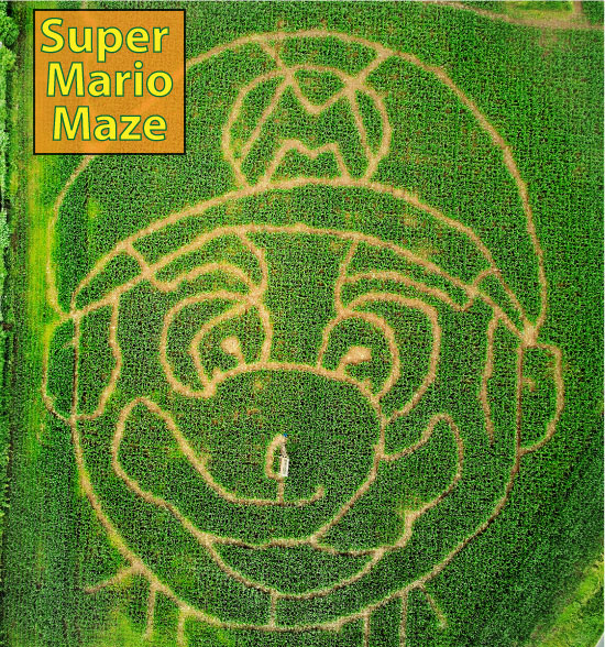 An image showing the Mario Maze.