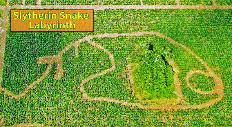 An image showing the Slytherin Snake Labyrinth